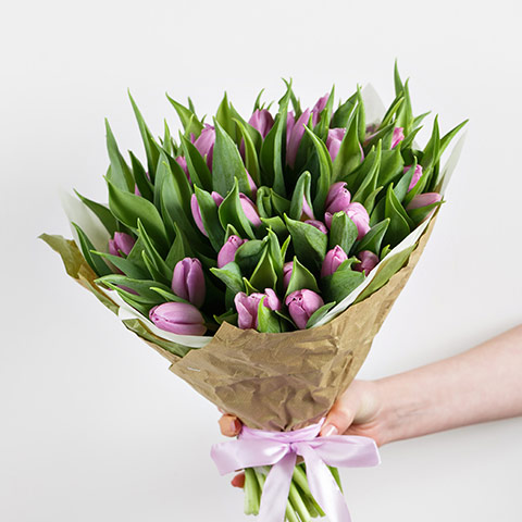 Precious Lavender Tulips